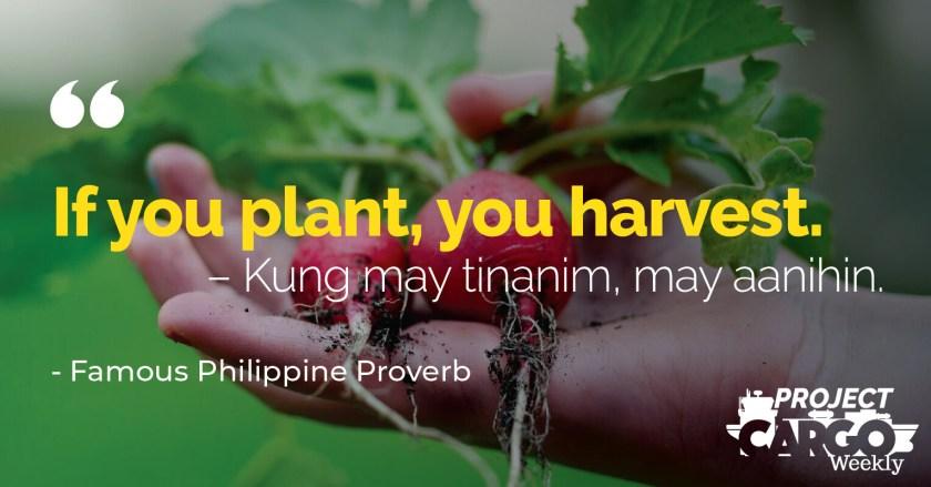 Week 19 proverb