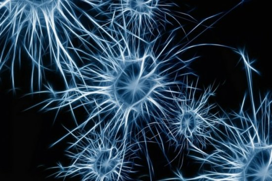 How cannabinoid therpay may help Parkinson's disease