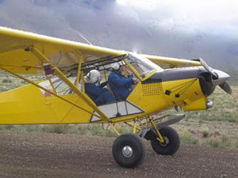 Wildlife-Services-plane-wolf-kill-decals-335