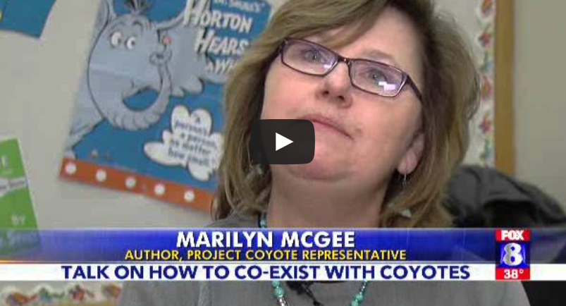 PC_Marilyn video
