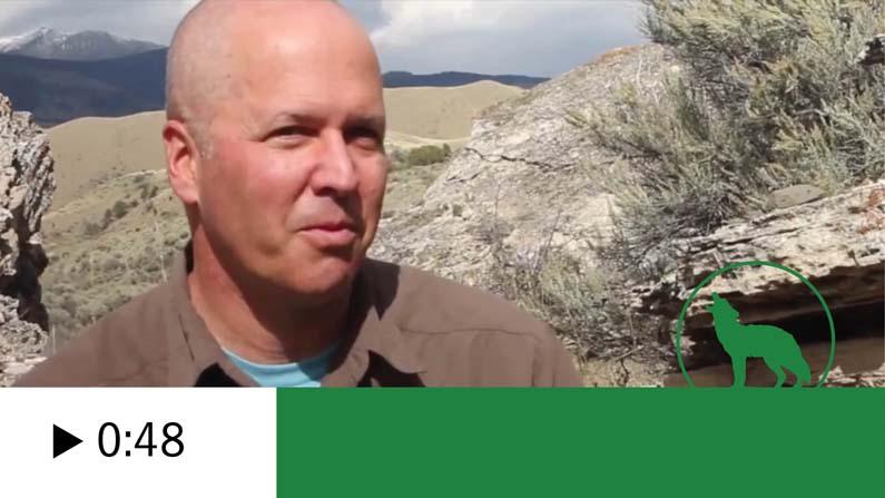 Michael Paul Nelson videoes Thumbnail