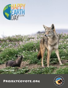 PC_earth_day_poster_TrishCarney_Coyote&Otter copy