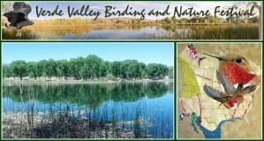 Verde Valley, AZ: Urban Coyote Workshop @ Dead Horse Regional Park | Cottonwood | Arizona | United States