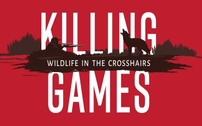 KILLING GAMES ~ Wildlife In The Crosshairs Has Entered the Film Festival Circuit