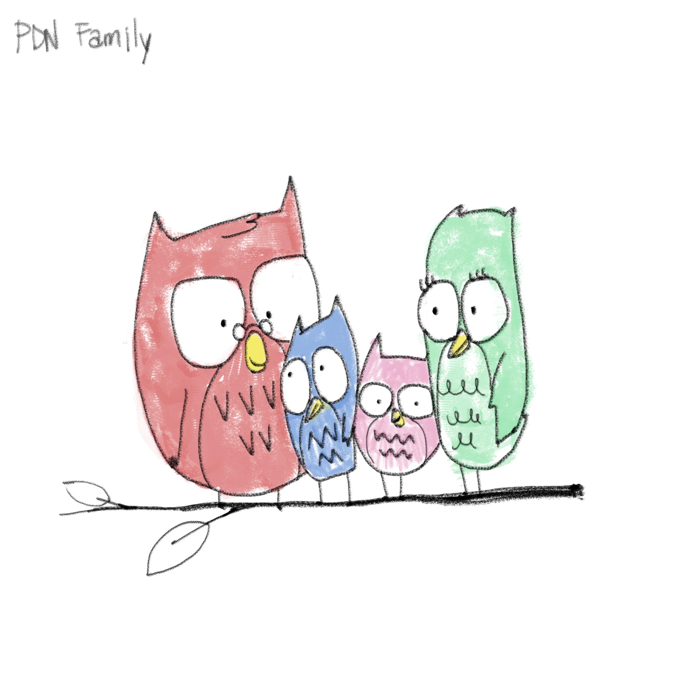 DMM_PDN_OwlFamily