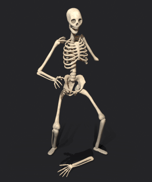 3D render of a skeleton on a black backdrop