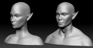 Black and white 3D models of male and female elf heads