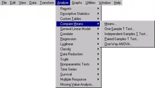 Choosing independent samples t test from SPSS