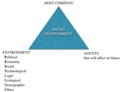 Variables that affect business survival