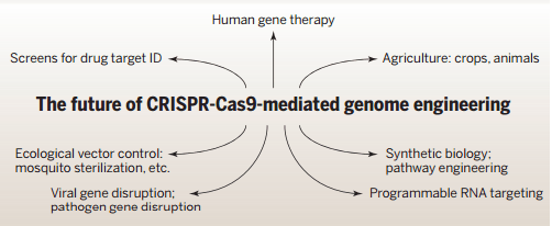 Figure 4: Future Prospects of CRISPR-Cas in Biomedicine and Biotechnology Source: Doudna & Charpentier, 2014
