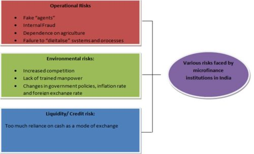 figure explaining different types of risks faced by small scale microfinance institutions