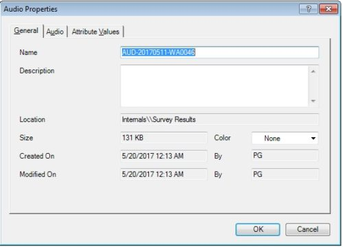 importing audio files in Nvivo for analysis