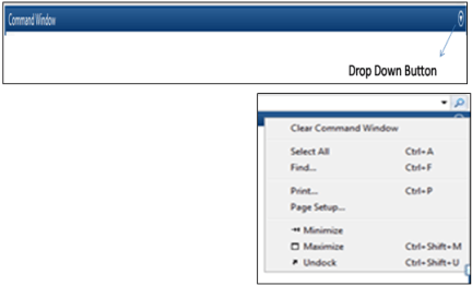 Drop down Button with options