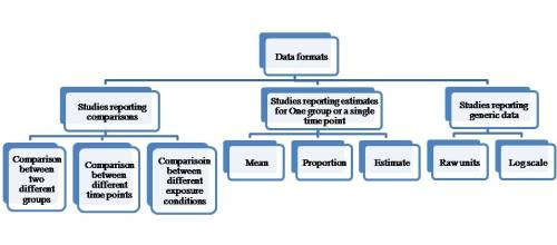 Different categories of data entry formats