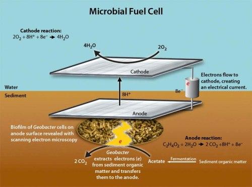 Harvesting Energy from marine sediments