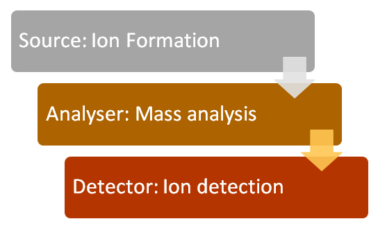 Steps in Mass Spectrometry