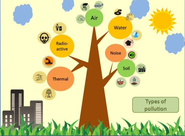 Figure 1: Types of pollution affecting the environment