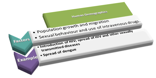 Human demographic impact on Emergence and prevalence of infectious disease