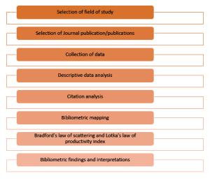 The bibliometrics process