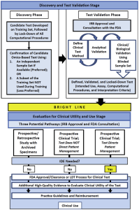 Principal stages in the biomarker validation and testing (Hayes, 2015)