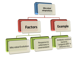 Factors of microbial adaptation impacting EID prevalence