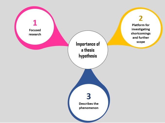 Importance of a thesis hypothesis