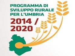 FEASR PSR Umbria - Fondo europeo agricolo per lo sviluppo rurale 2014 2020 PSR Programma di Sviluppo Rurale Umbria
