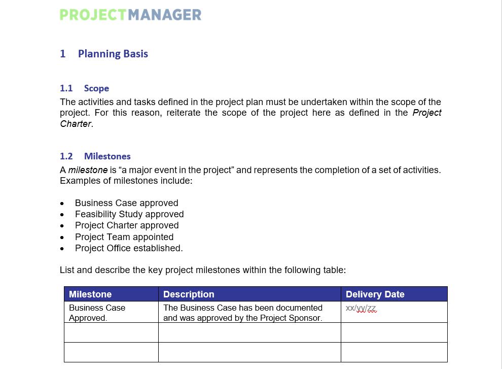 Captura de pantalla de la plantilla del plan del proyecto de ProjectManager.com