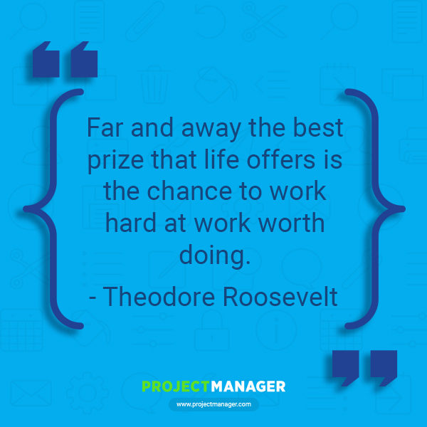 Theodore roosevelt business quote
