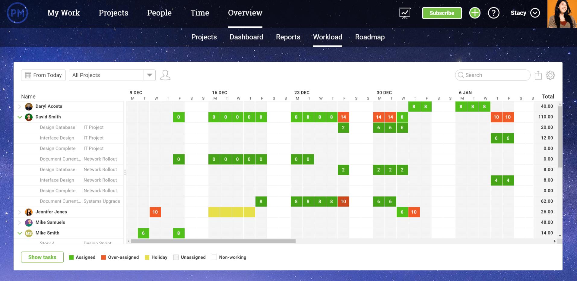 captura de pantalla de la página de carga de trabajo en ProjectManager.com