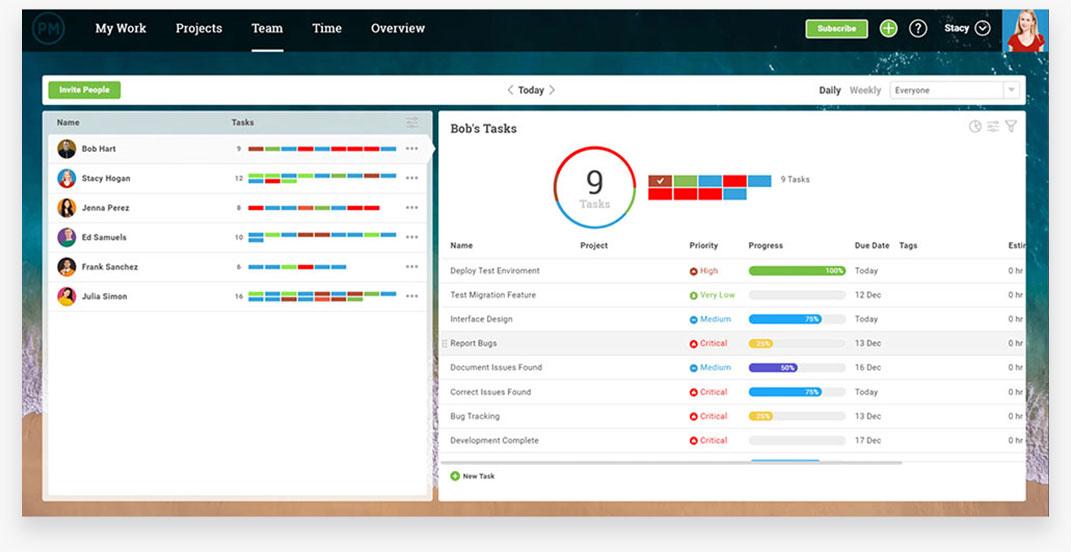Interfaz de gestión de tareas de ProjectManager.com, que representa la interfaz de gestión de tareas de