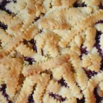 Baking With Kids Presents: Vegan Blueberry Pie