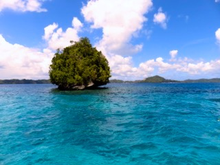 rock island palau with bentprop