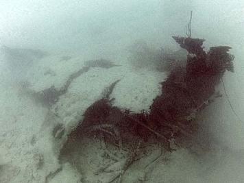 F6F 3 Hellcat found in Palau Lt. Punnel's hellcat found in palau by bentprop.org