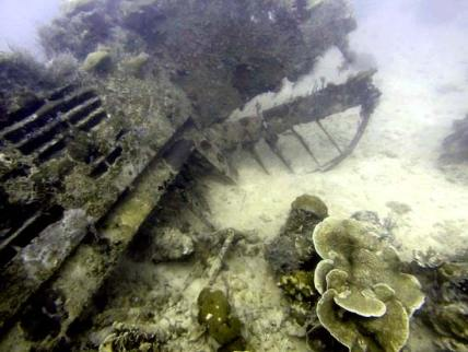 The Tail of a b24 bomber in palau found by bentprop.org