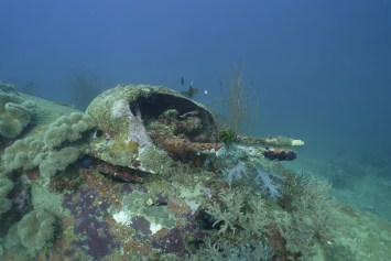 The turret guns of a World War II era B-25 Bomber, documented by Project Recover, rests on the sea floor in the waters of Papua New Guinea.