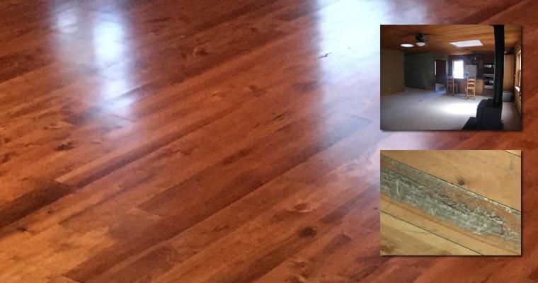 Project: Refinishing Hardwood Floor
