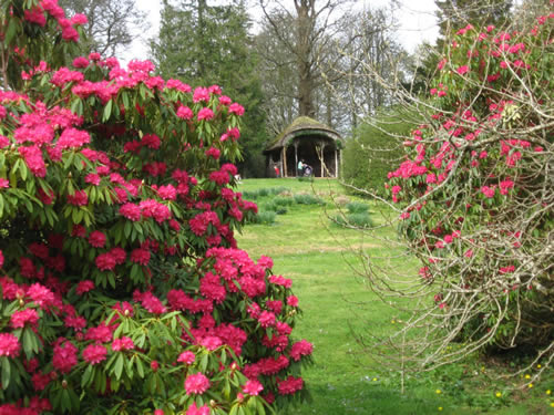 Azaleas and the Heather House at the Florence Court Estate in County Fermanagh, Ireland