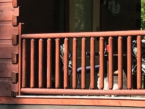 The porch rails