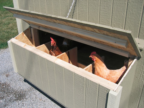 The nesting box has access from outside. The lid hooks, so you can reach the eggs easily. Little Cottage Company Chicken Coop Kits