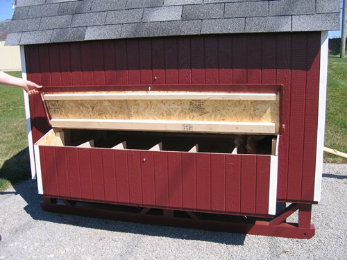The 6 x 8 coop has 6 Nesting Bins for 8 to 22 hens.