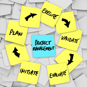 What Business Value Is to Project Management