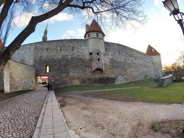 Tallinn Medieval