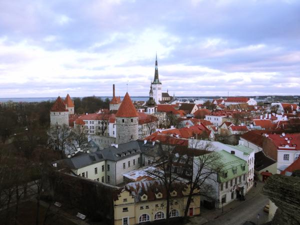 Patikuli Trepp Viewing Point Tallinn