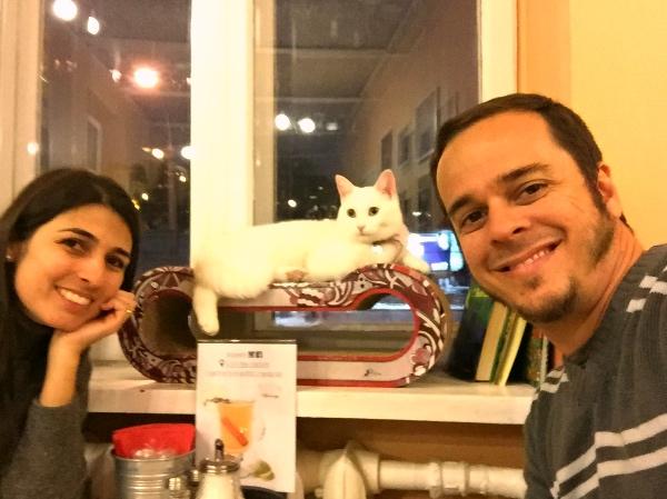 Vilnius Cat Cafe