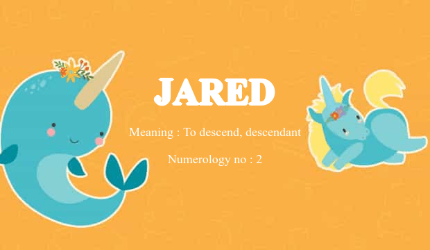 jared name meaning