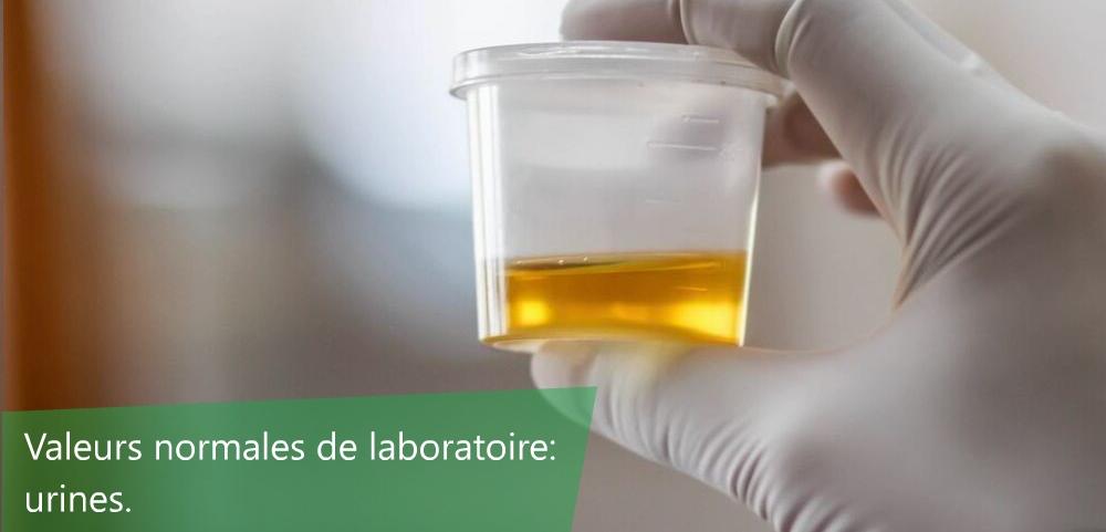 valeurs usuelles urines