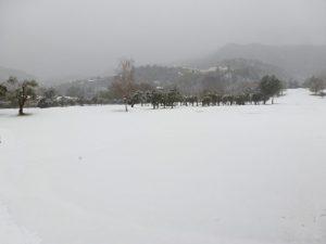 2012_Garlenda_Under_Snow_01