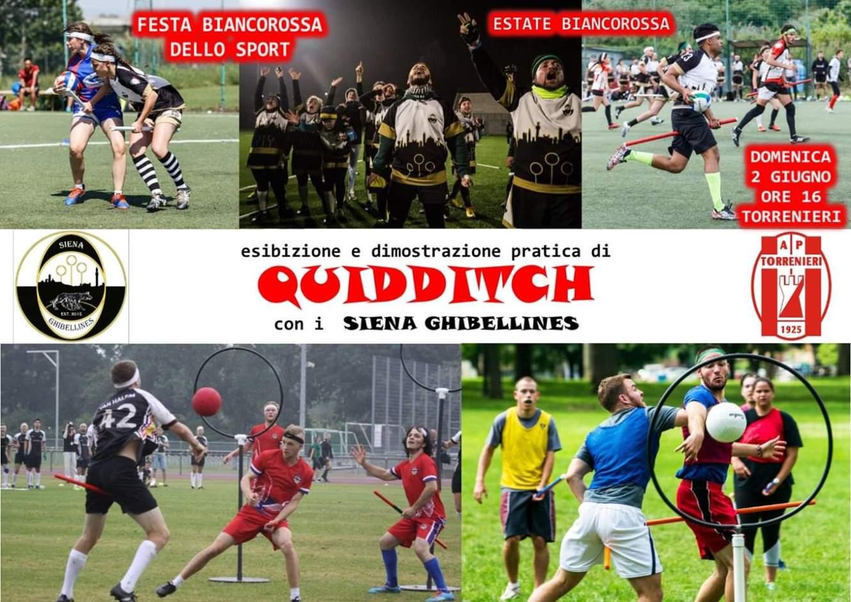 Questa immagine ha l'attributo alt vuoto; il nome del file è Quidditch.jpg