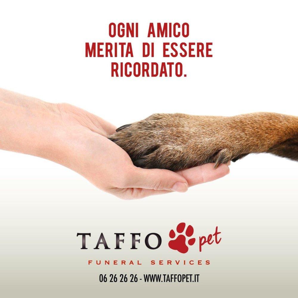 Il successo della Taffo Pet sta nella sua comunicazione